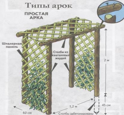 Перголы арки из дерева своими руками
